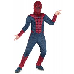 Αποκριάτικη Στολή Spider Hero