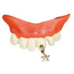 Αποκριάτικο Αξεσουάρ Αστεία Δόντια 4