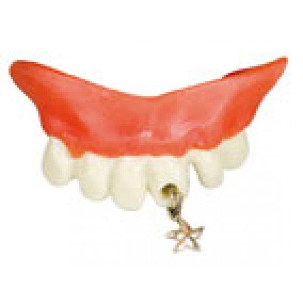 Αποκριάτικα Αστεία Δόντια, με Σκουλαρίκι Αστεράκι